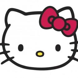 Hello Kitty Dikdörtgen Yenilebilir Pasta Resim Baskısı
