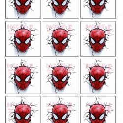 Spider Man Duvar Yenilebilir Kurabiye Resim Baskısı