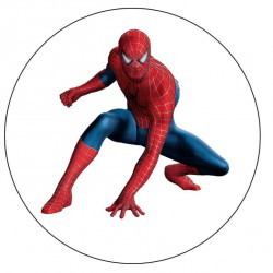 Spider Man Yuvarlak Yenilebilir Pasta Resim Baskısı
